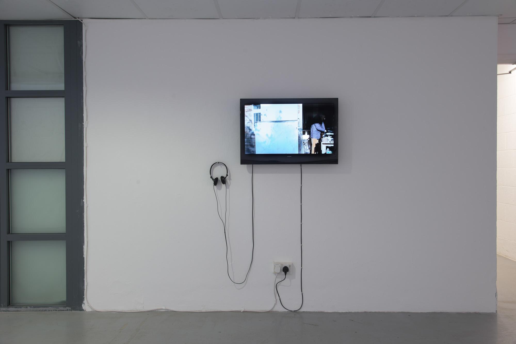 Sophy Rickett, Objects in the Field, 2013 Video